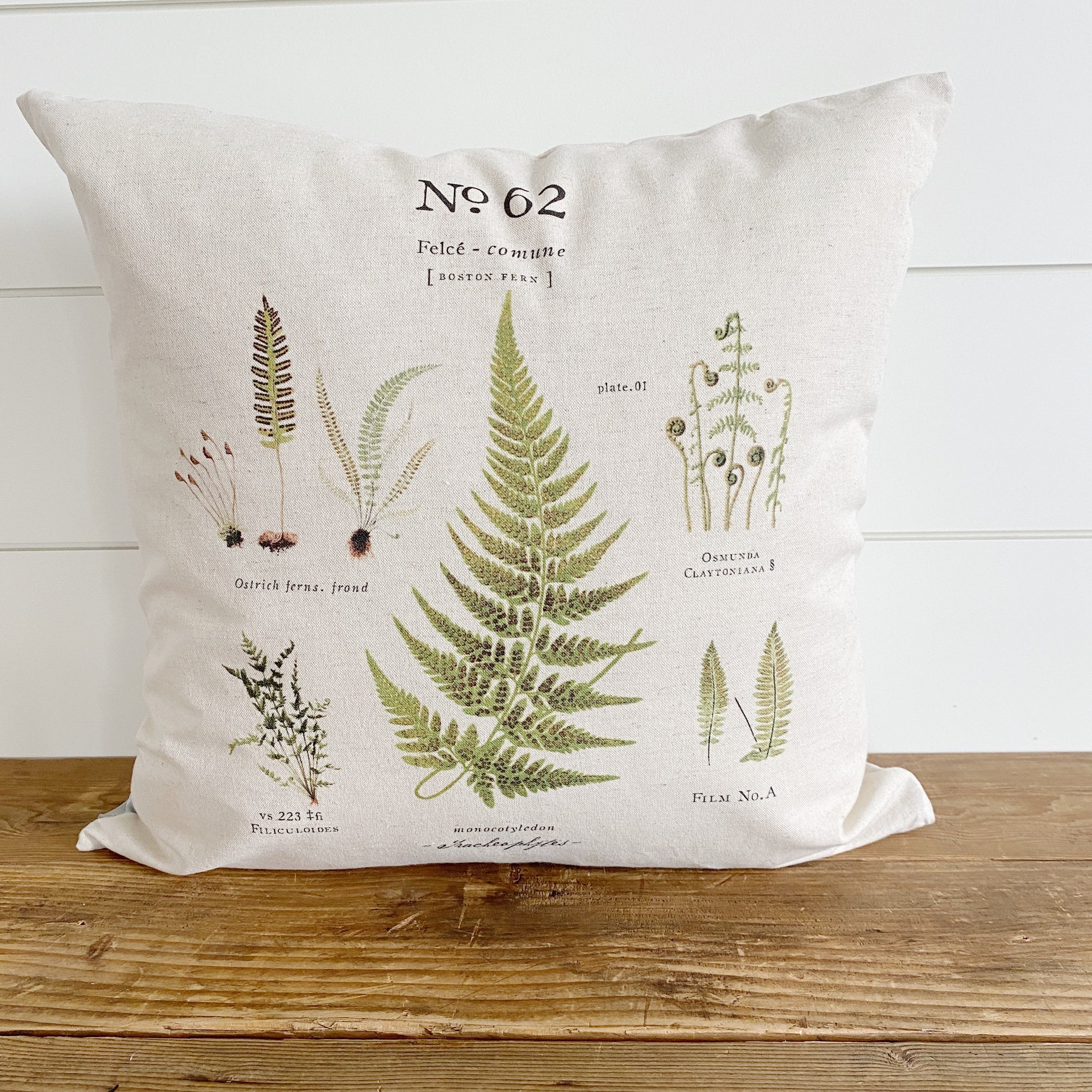 Boston Fern Botanical Pillow Cover