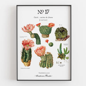 Cactus Botanical Art Prints (Set of 3) - Linen and Ivory