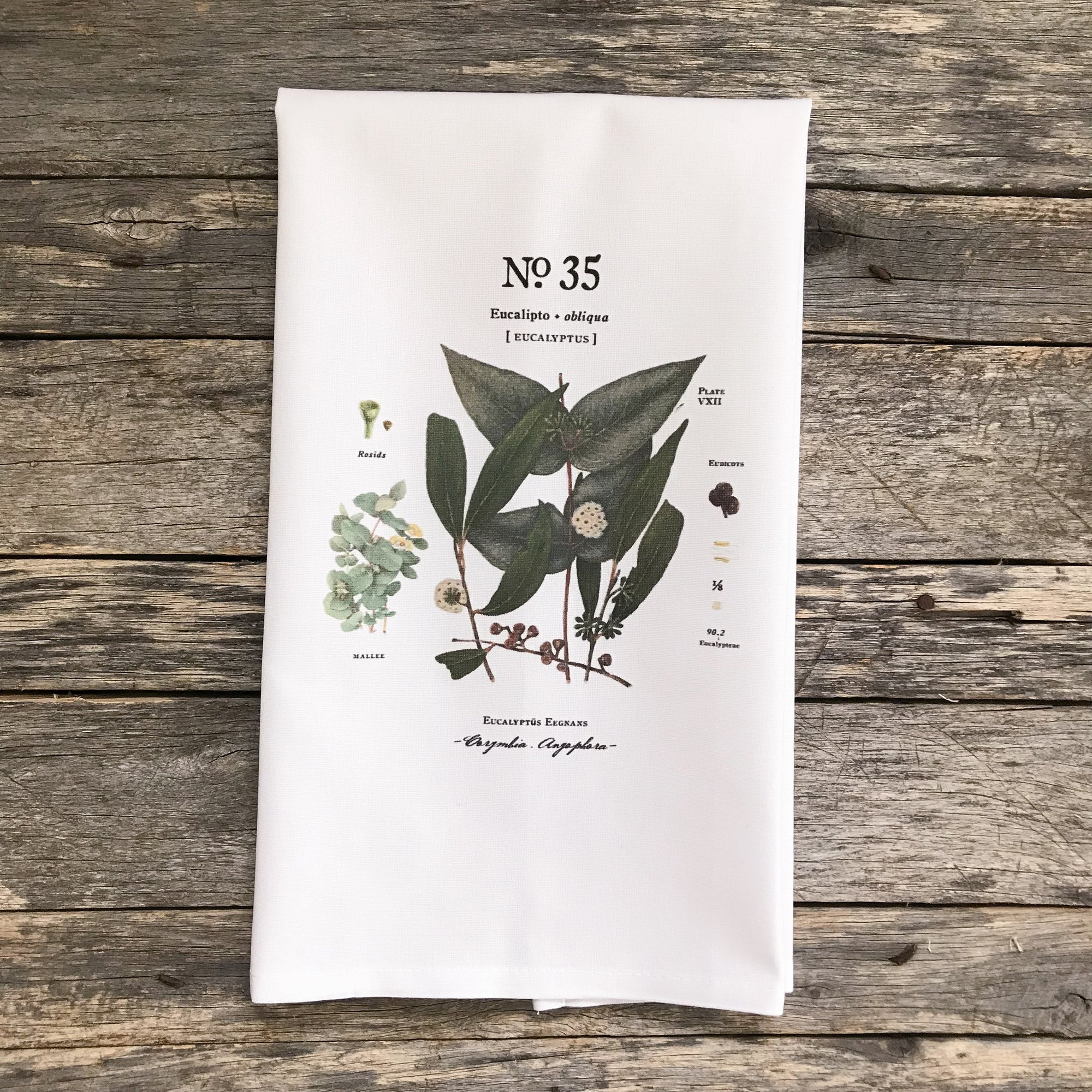 Eucalyptus Botanical No. 35 Tea Towel - Linen and Ivory