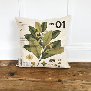 Modern Botanical 1 Pillow Cover (No Background) - Linen and Ivory