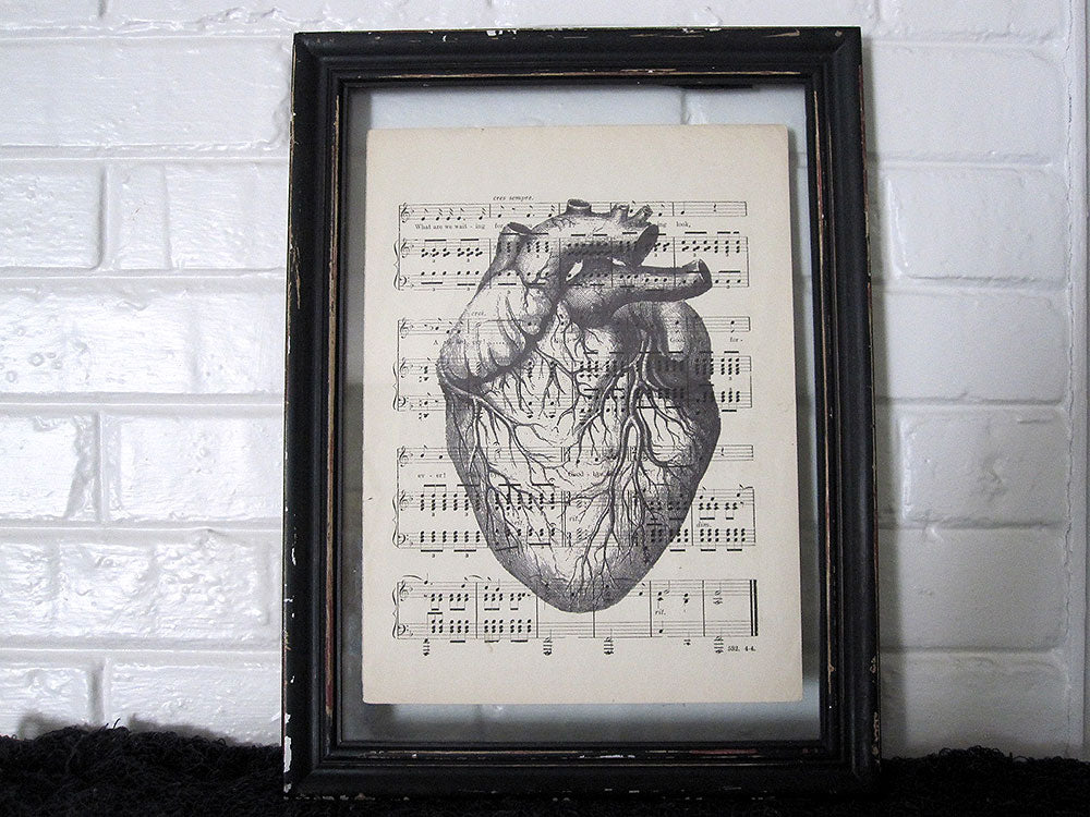 Veiny Heart Art Print on Vintage Music Sheet