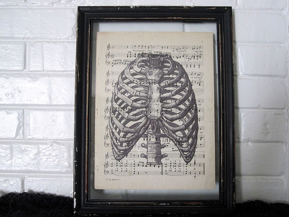 Ribcage Art Print on Vintage Music Sheet