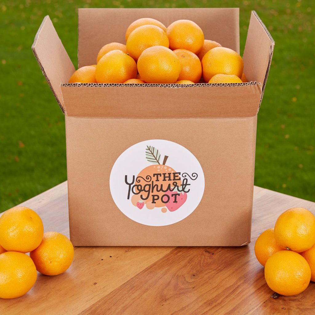 Bulk buy Oranges packed in Ormskirk