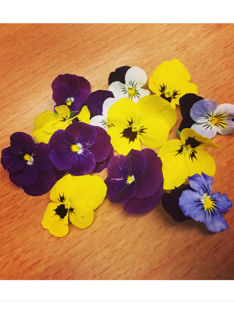 Norfolk Violas - Edible Flowers