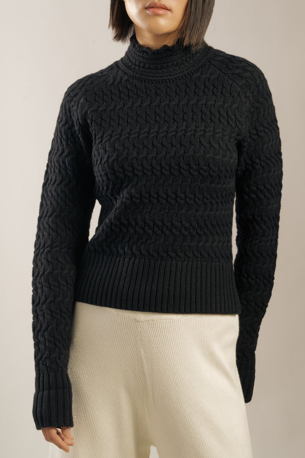 The 'Dyer' Rollneck