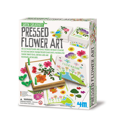 4m-green-creativity-pressed-flower-art- (1)