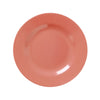 rice-dk-6-melamine-round-side-plates-assorted-shine- (6)