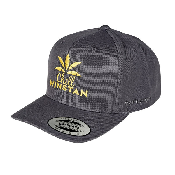 Curved Peak Snapback Chill Winstan Caps