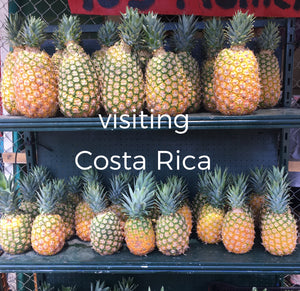 Adventures  |  Visiting Costa Rica v2.0