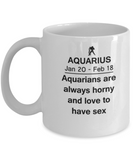 Aquarius are always Horny and Love to have sex  - Aquarius Mug - Funny White coffee mugs 11 oz
