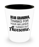 Grandma gift mugs, Dad Grandma Thanks for your influence I turned out Awesome - Funny Shot Glass Premium Gifts Ideas