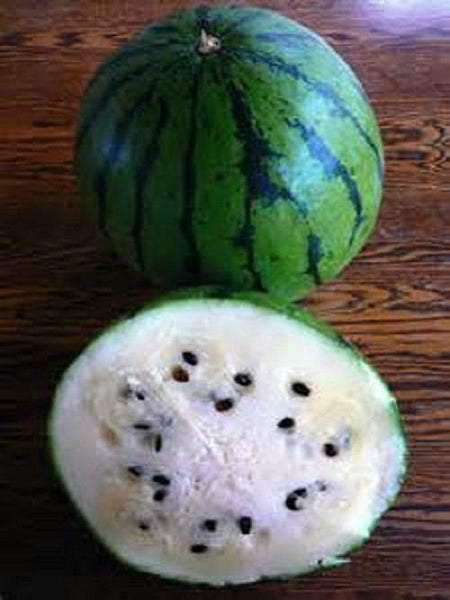 10 Russian Watermelon Seeds-1160