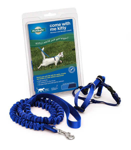 PetSafe Come With Me Kitty Harness & Bungee Cat Leash, Royal Blue/Navy