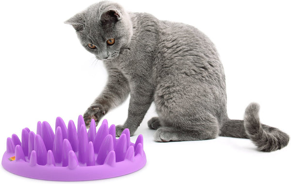 Northmate Catch Interactive Cat Feeder, Purple
