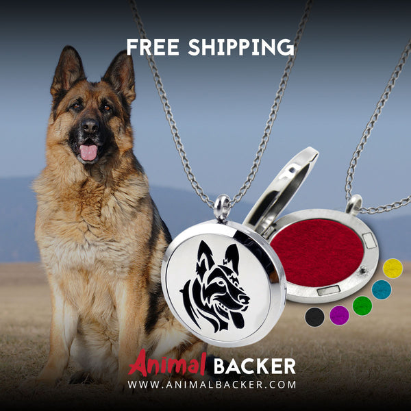 AROMATHERAPHY OIL DIFFUSER NECKLACE (GSD)