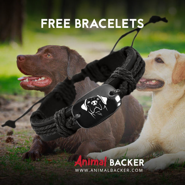 FREE Lab Backer Bracelet