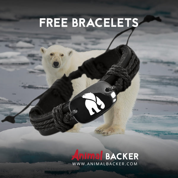 FREE Polar Bear Backer Bracelet