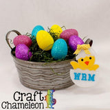 Set of 5 ~ Easter Chick Acrylic Shapes - CraftChameleon  - 1