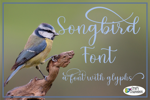 Songbird Font ~ A Font with Glyphs