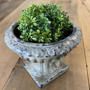 Wide Round Planter with Square Base *Pick up only*