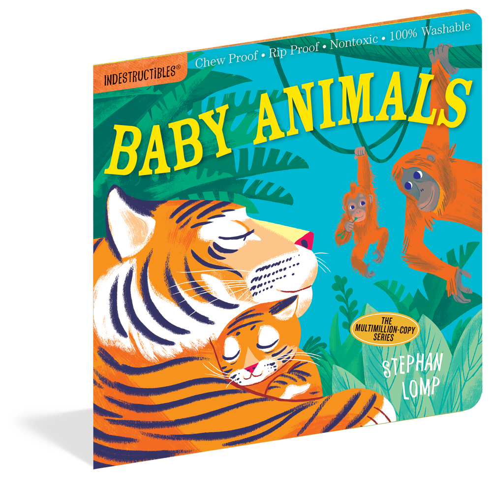 Indestructibles Books for Baby