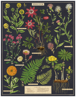 Load image into Gallery viewer, Cavallini & Co. Herbarium 1000 Piece Vintage Puzzle