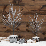 Frosted Twig Trees *Pickup only*