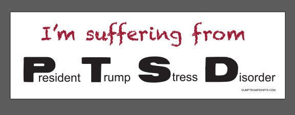 Bumper Stickers (6 Pack)