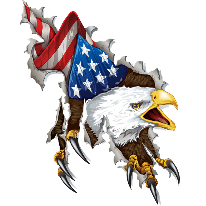 4e7bb0ef932cf Ripped American Eagle Decals with Free Shipping! - In Tees