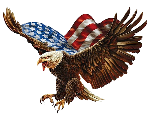 proud free american eagle decals with free shipping in tees