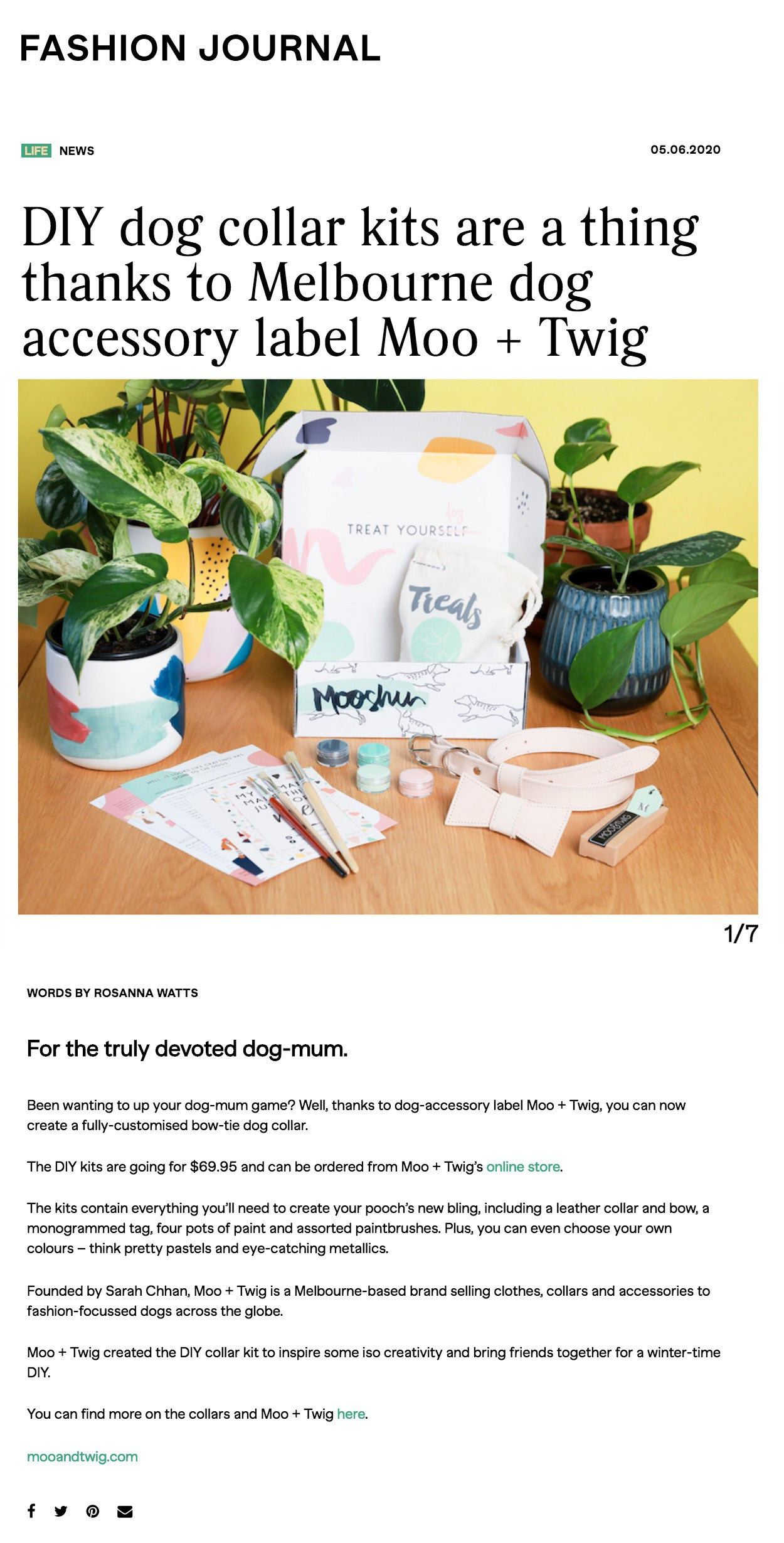 Fashion Journal Magazine - Moo + Twig DIY Dog Collar Kit