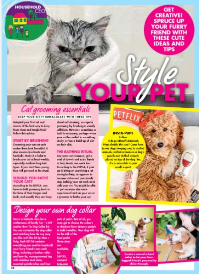 MOO+TWIG: New Idea Magazine, Dog Harnesses, Dog Collar, Dog Accesorries