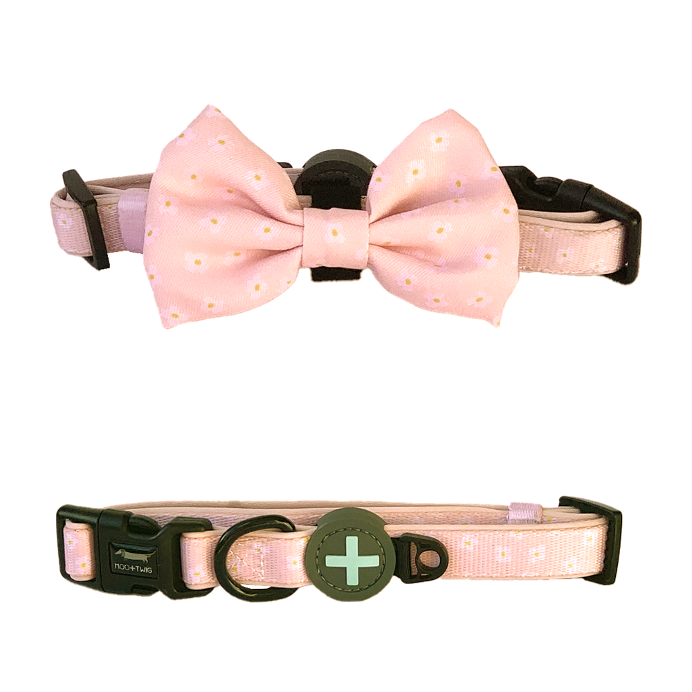 Peach Dog Collar with Bow Tie and Daisies designed in Australia with removable bow tie. Suitable dog collar for small to medium sized dogs.