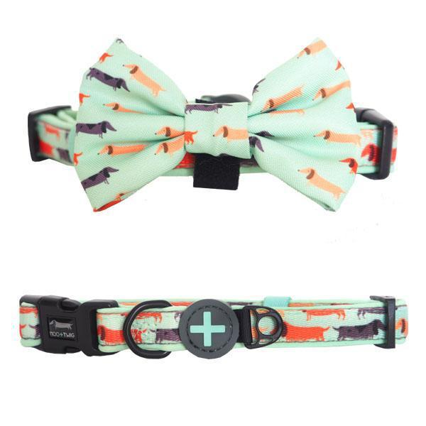 Dachshund Dog Collar with Bow Tie - Best Dog Collar for Dachshunds - Dachshund Puppy Wearing Dog Collar with Bow Tie