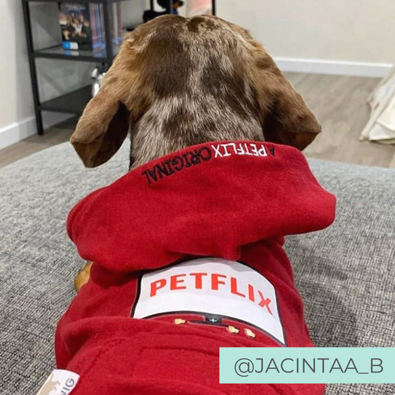 Dog Wearing Red Netflix Original Hoodie