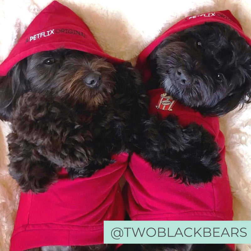 Two dogs netflix and chill wearing red netflix original hoodies