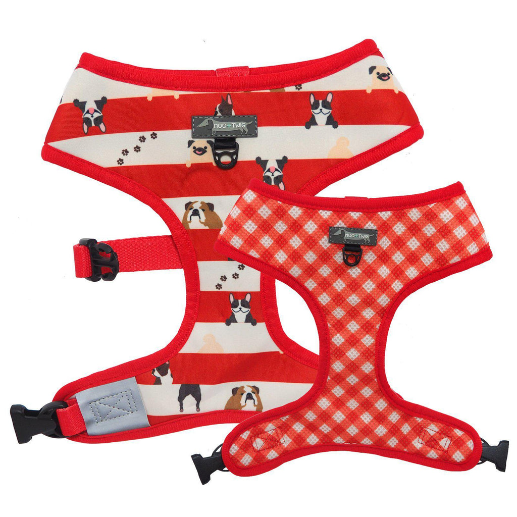 Reversible Red Dog Harness with Pugs, French Bulldogs, Bulldogs and Boston Terriers - Dog Wearing Red Dog Harness - Bulldog Wearing Red Dog Harness - Red Gingham Dog Harness