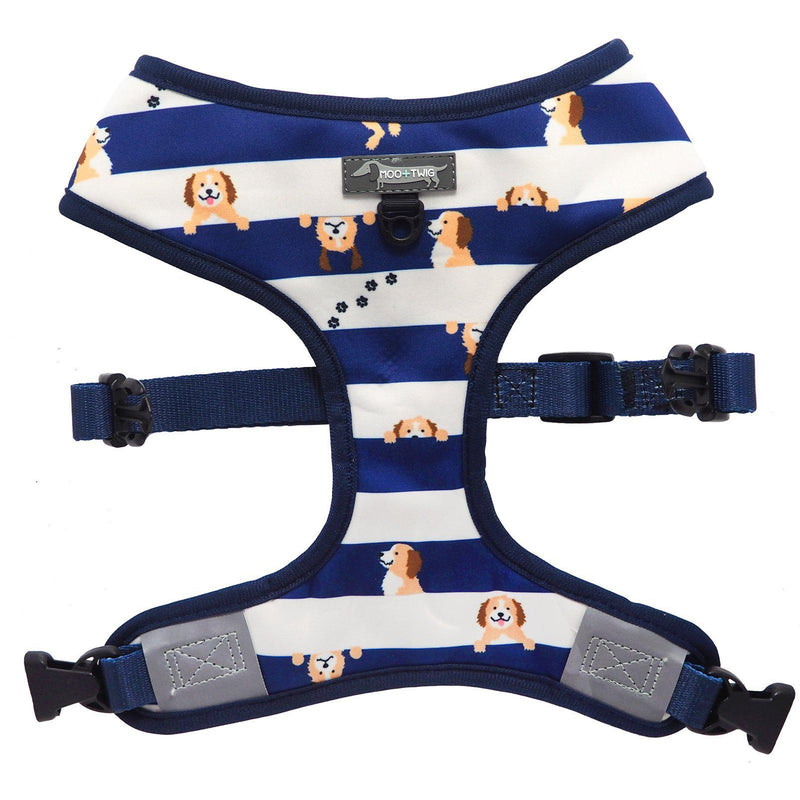 Reversible Dog Harness for Cavoodles, Groodles, Cavapoos, Goldendoodles, Labradoodles. Cavoodle wearing dog harness with Cavoodle print. Best dog harness for cavoodles.