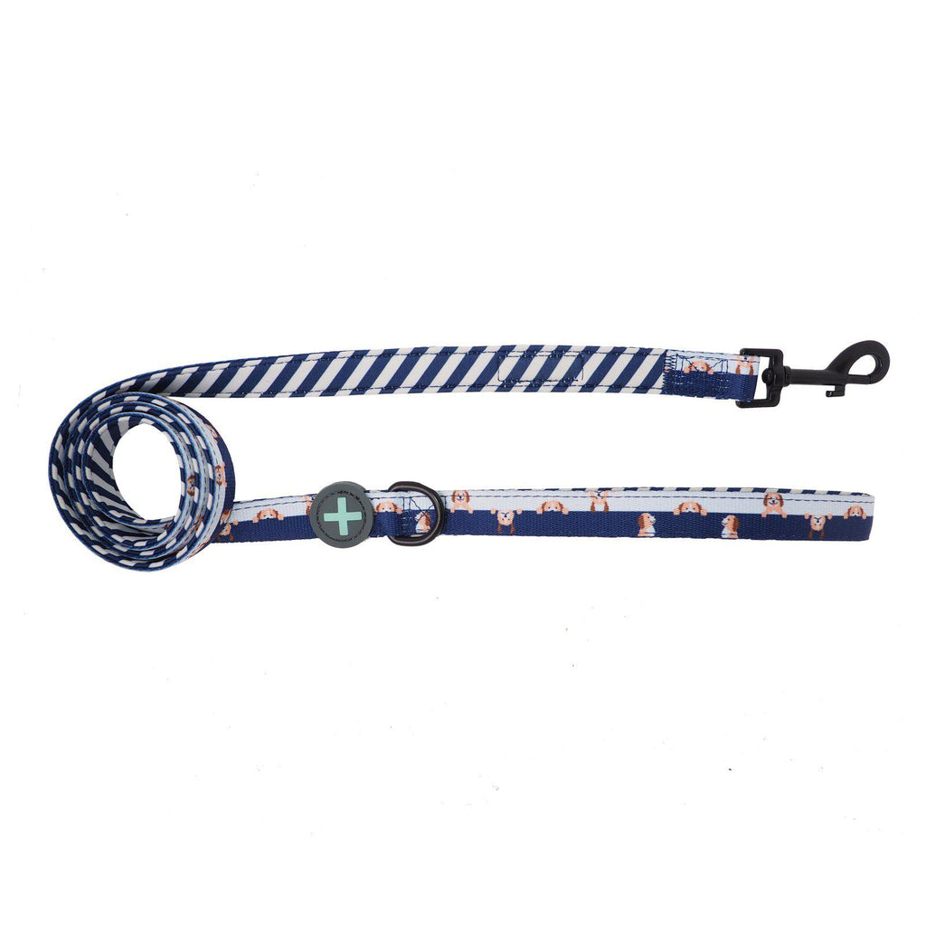 Neoprene Blue and White Dog Leash with Cavoodles, Spoodles, Cavapoos, Labradooles, Groodles designed in Australia