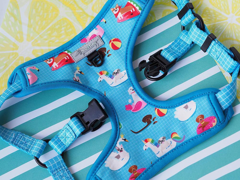 Blue Pool Float Step In Dog Harness, Summer Dog Harness. Easy No Choke Step In dog Harness.
