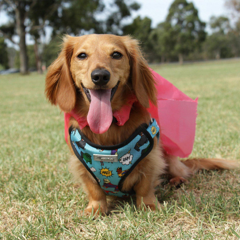 STEP IN DOG HARNESS - Superdog, Harnesses - MOO AND TWIG