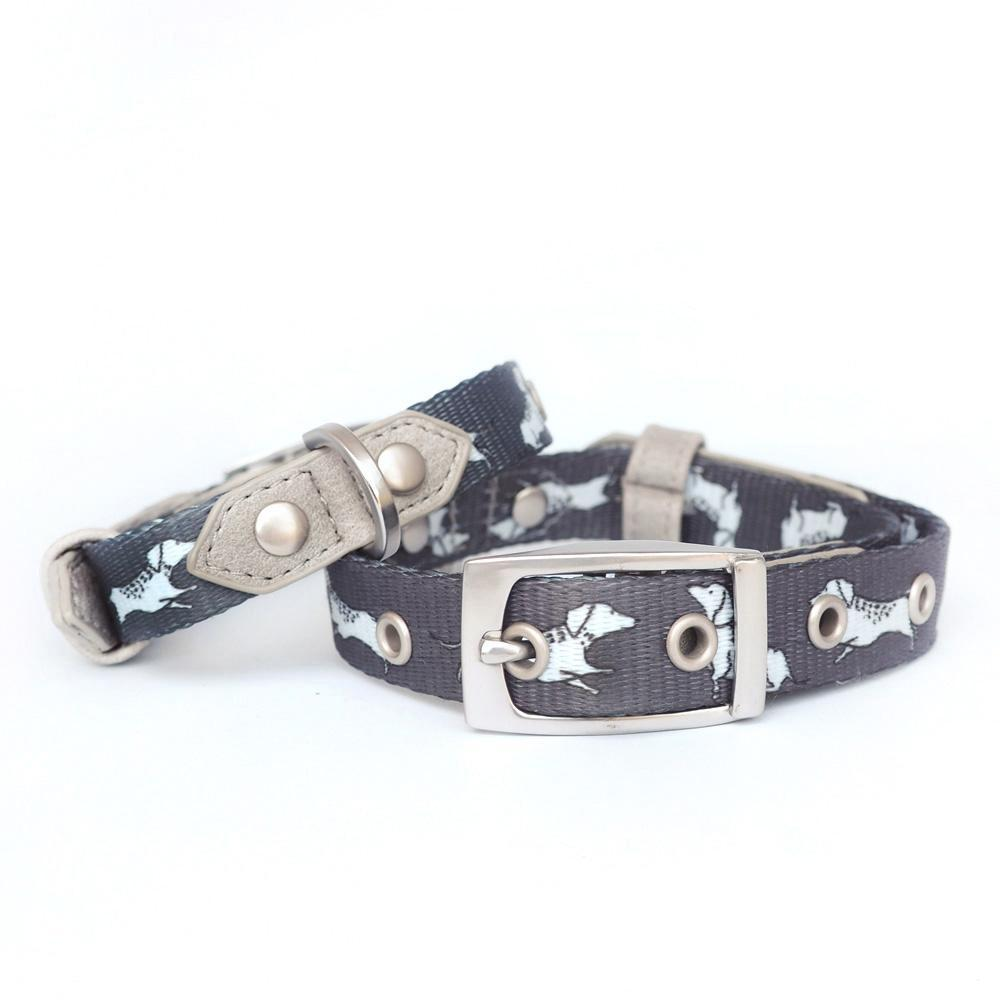 Dachshund Dog Collar, Dog Collar for Dachshunds