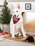 Buffalo Check Holiday Dog Bandanas - Mudpie Fall Puppy Collar