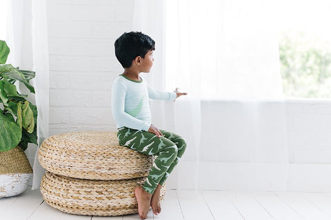 Moss Goodnight Dinosaur Long Sleeve Pajama Set - Kickee Pants Fall 1-2019