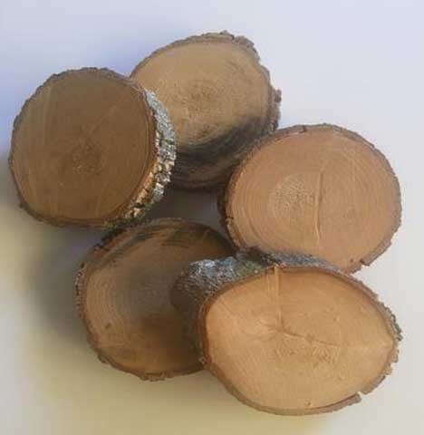 Timber Rounds | Small | 30 available