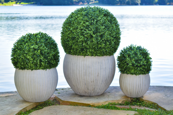 Faux Boxwood - Indoor / Outdoor