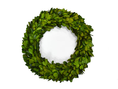 Preserved Boxwood Candle Ring - 10
