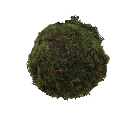 Mossy Sphere 5""