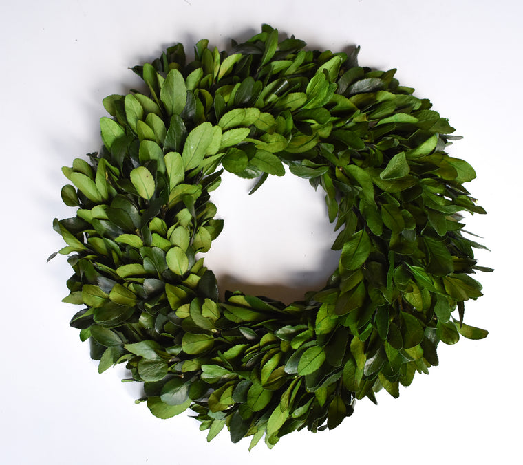 Preserved Laurel Wreath - 17