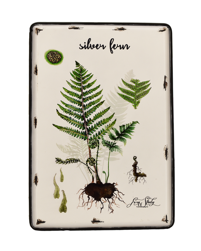 Metal Art - Silver Fern